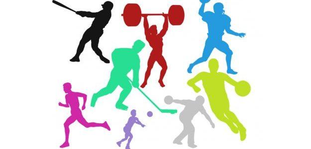 Spor Faaliyetleri